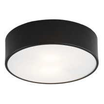 Ceiling lamp ARGON DARLING 3081