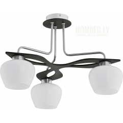 Griestu lampa TK Lighting DAISY 173